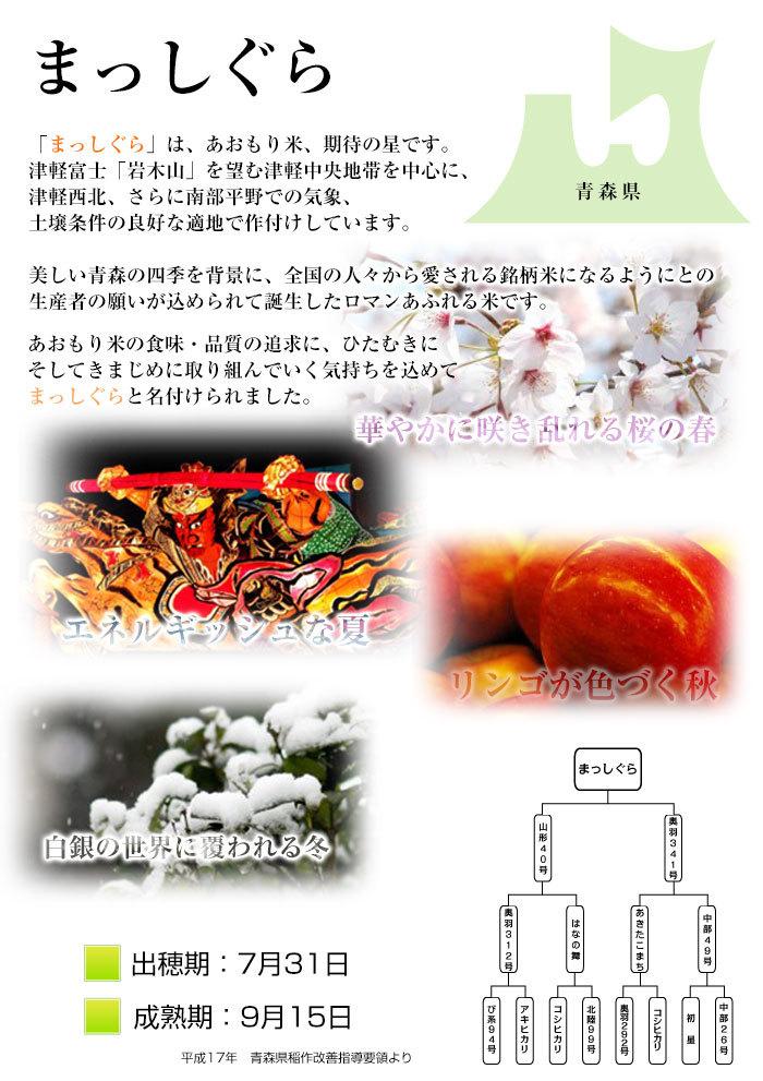 令和2年度 青森県産まっしぐら 白米10kg _画像5