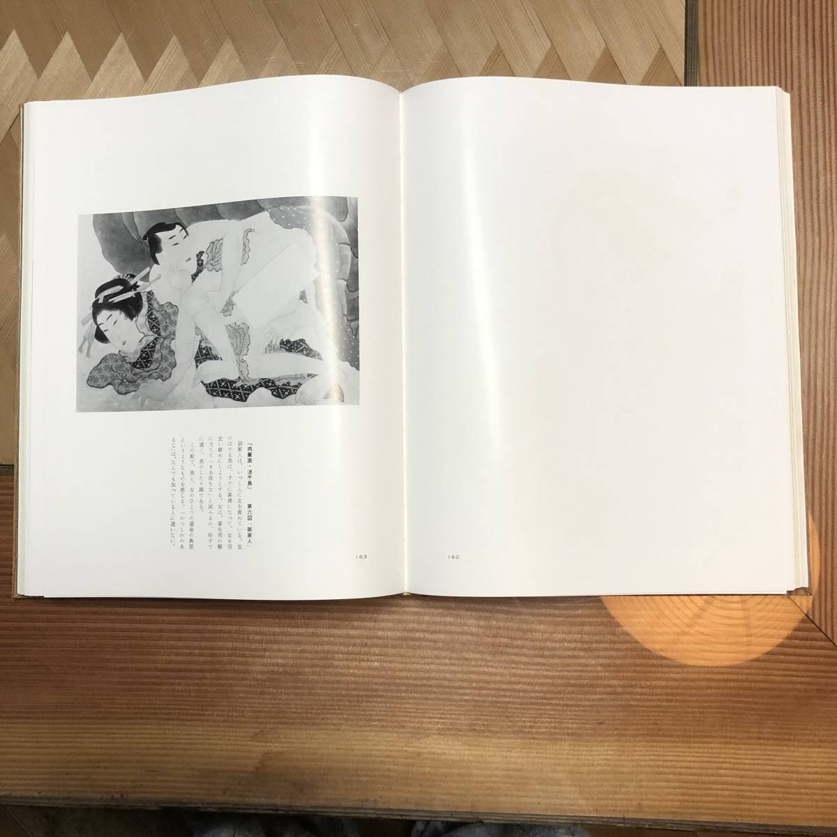 新発見 北斎と浪千鳥秘画帖 美品_画像8