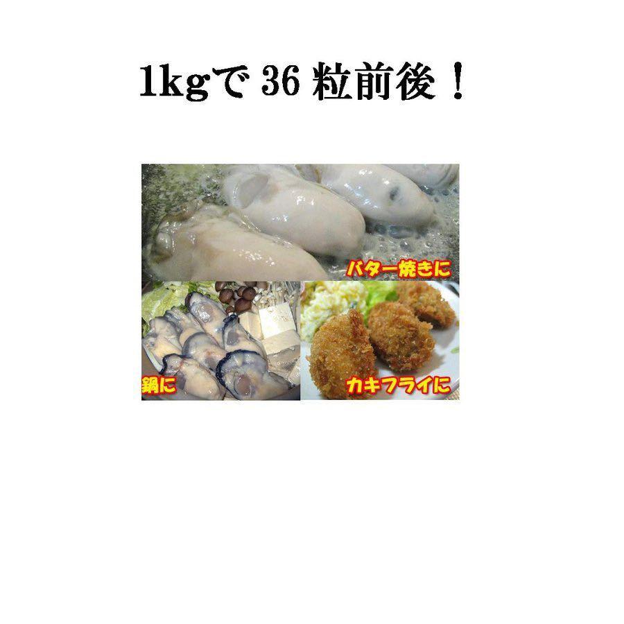 ①④⑥ 牡蠣 かき カキ 冷凍 2LからLサイズ 2kg  剥き身 広島産 送料無料_画像4
