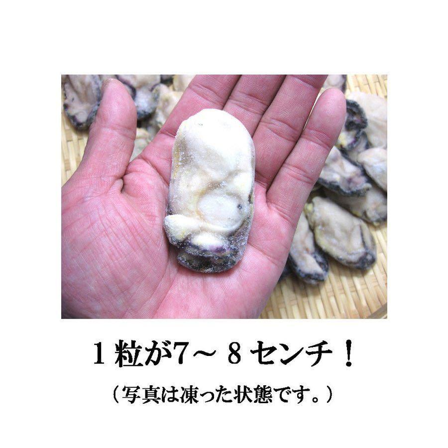①④⑥ 牡蠣 かき カキ 冷凍 2LからLサイズ 2kg  剥き身 広島産 送料無料_画像3