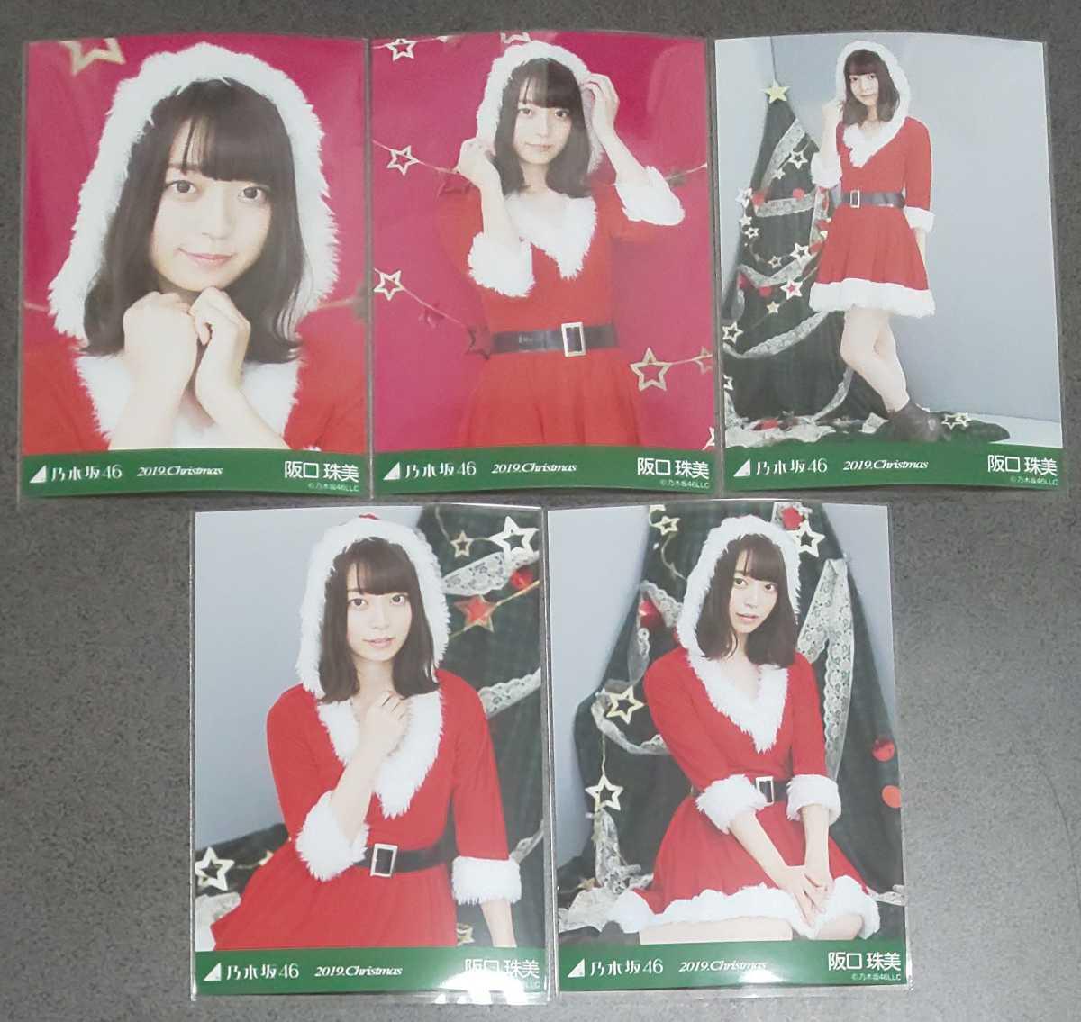 乃木坂46 阪口珠美 2019.Christmas Web限定 生写真 クリスマス サンタ
