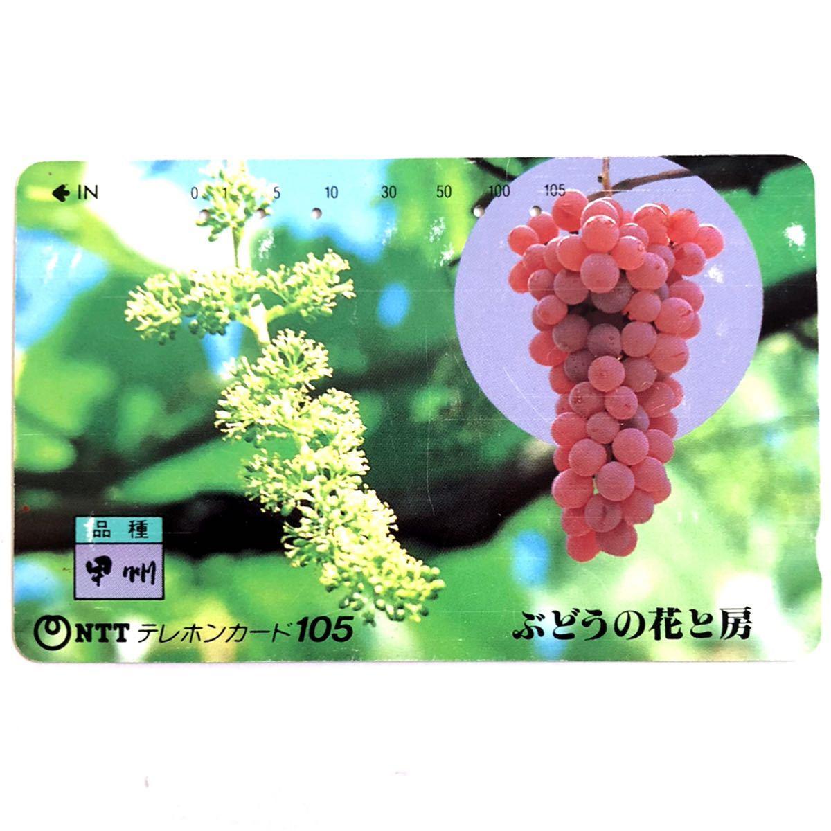 【使用済み・度数0・テレホンカード】 植物・果物 『甲州 ぶどうの花と房』 1990年 同梱可 テレカ_画像1