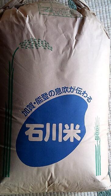 ギフトに  令和2年度産 石川県コシヒカリ白米5キロ 1980円 _画像3