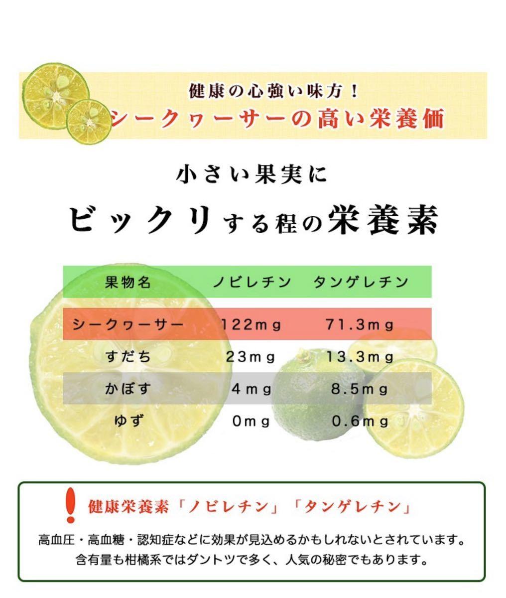 青切りシークヮーサー100%果汁500ml 3本セット 沖縄県産 無添加原液 シークワーサー 健康 ノビレチン 送料無料_画像3