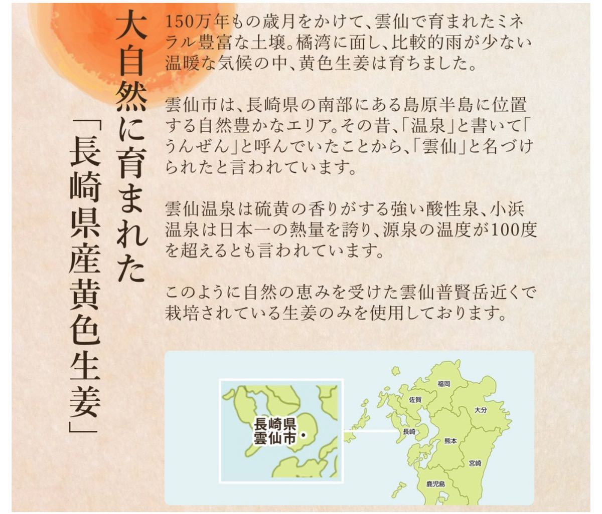 長崎県産しょうが使用 生姜美人 ペースト状 1箱31包入り 化学調味料 着色料 保存料 香料 全て一切不使用 温活_画像4