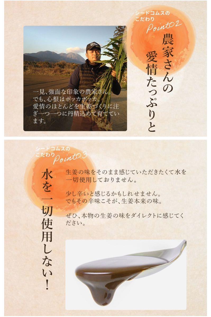 長崎県産しょうが使用 生姜美人 ペースト状 1箱31包入り 化学調味料 着色料 保存料 香料 全て一切不使用 温活_画像5