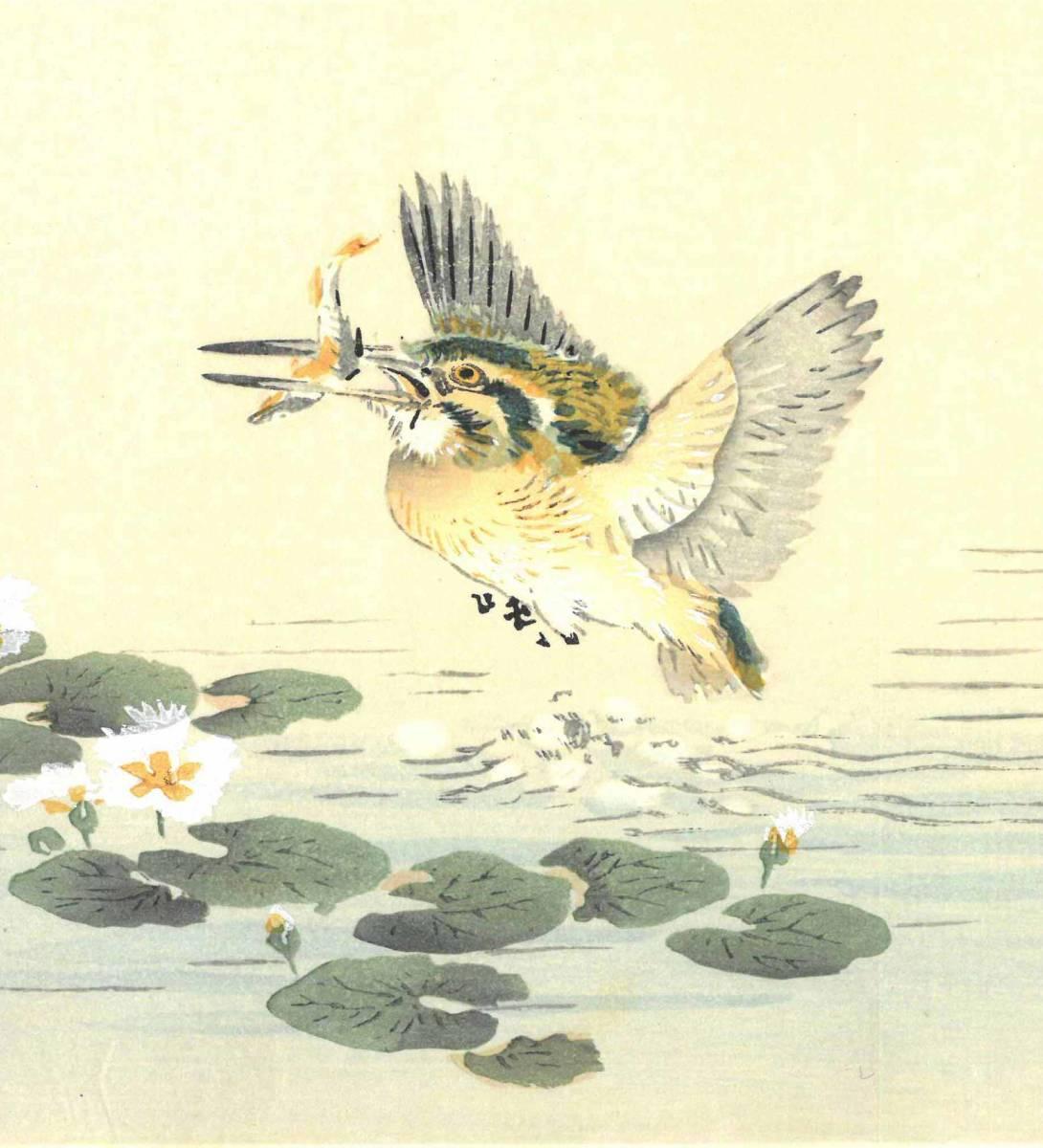 幸野楳嶺 (Kono Bairei) (1844~1895) 木版画 かわせみ 初版明治期~ 版元蔵出し作品! 京都の一流の摺師の技をご堪能下さい。_画像7