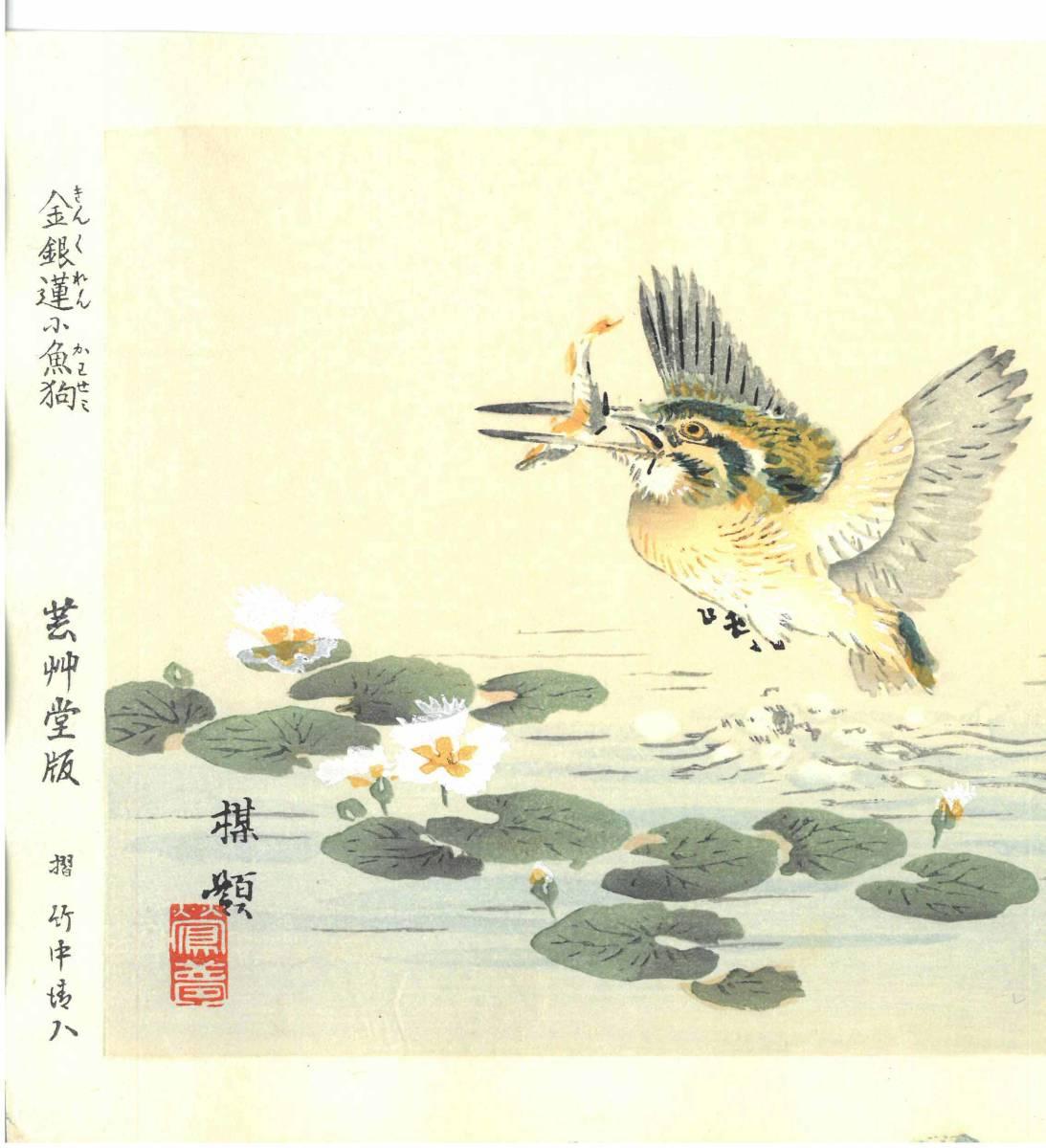 幸野楳嶺 (Kono Bairei) (1844~1895) 木版画 かわせみ 初版明治期~ 版元蔵出し作品! 京都の一流の摺師の技をご堪能下さい。_画像3