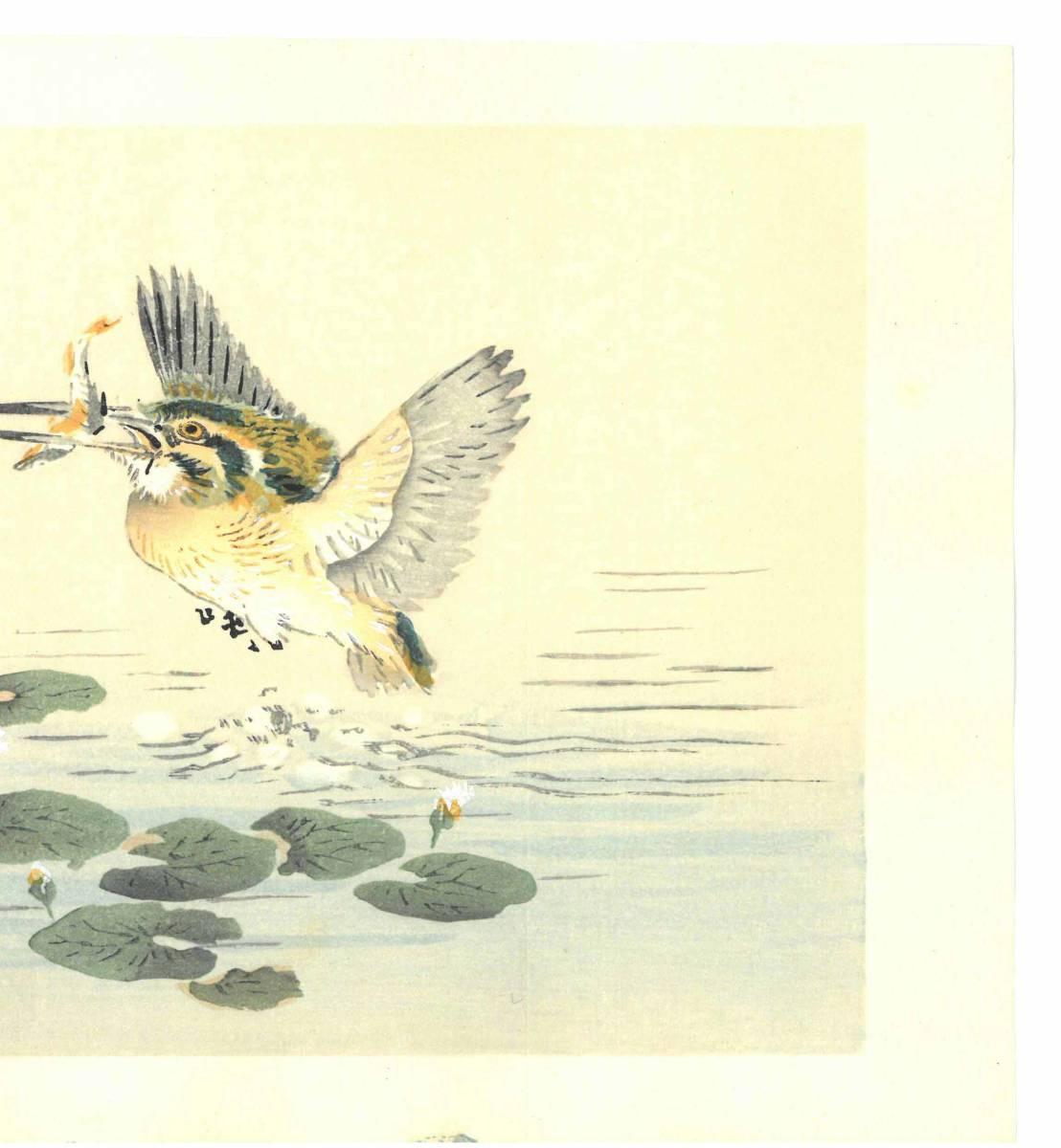幸野楳嶺 (Kono Bairei) (1844~1895) 木版画 かわせみ 初版明治期~ 版元蔵出し作品! 京都の一流の摺師の技をご堪能下さい。_画像5