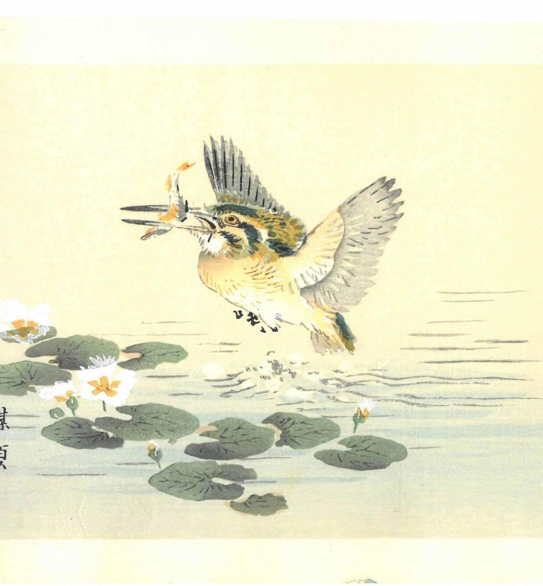 幸野楳嶺 (Kono Bairei) (1844~1895) 木版画 かわせみ 初版明治期~ 版元蔵出し作品! 京都の一流の摺師の技をご堪能下さい。_画像4