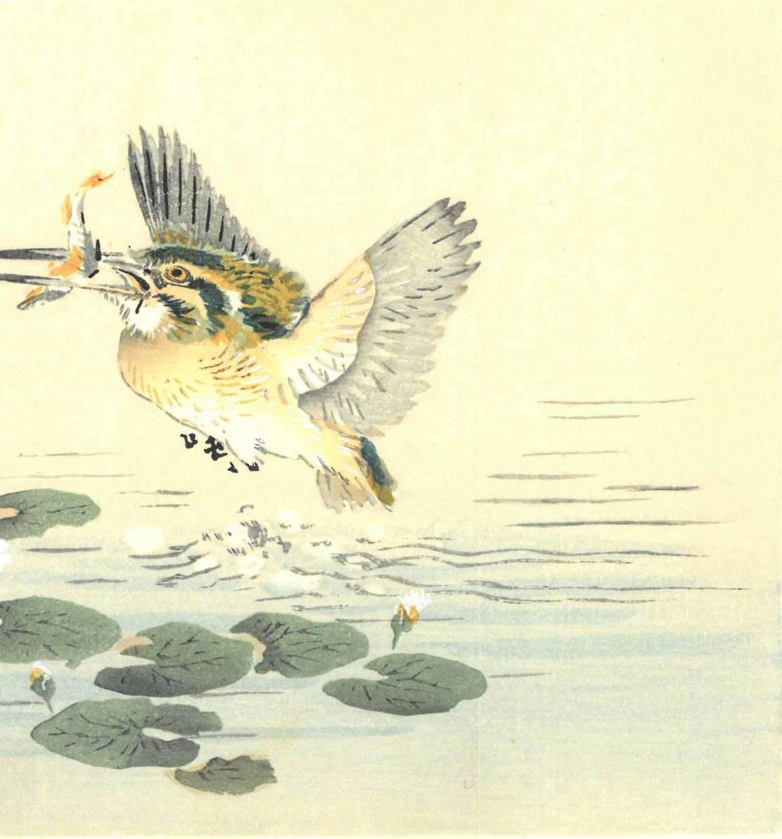 幸野楳嶺 (Kono Bairei) (1844~1895) 木版画 かわせみ 初版明治期~ 版元蔵出し作品! 京都の一流の摺師の技をご堪能下さい。_画像8