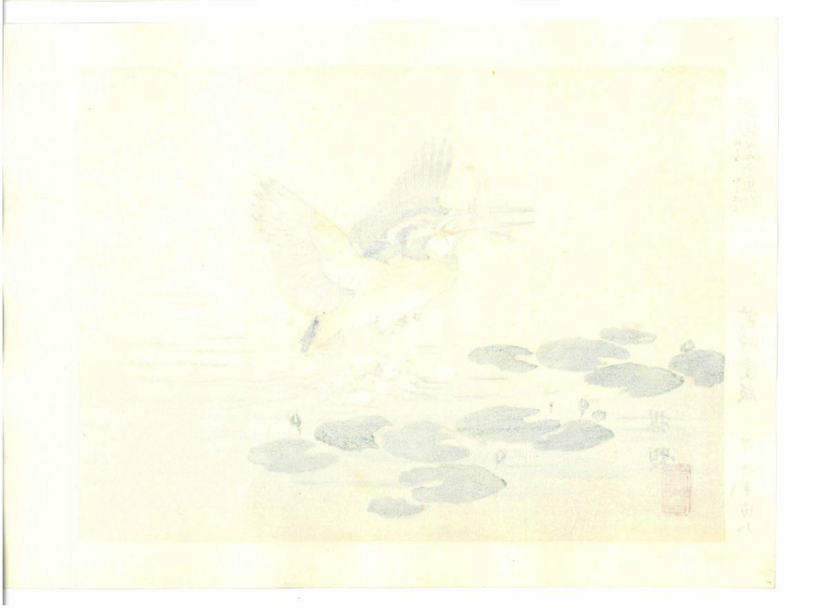 幸野楳嶺 (Kono Bairei) (1844~1895) 木版画 かわせみ 初版明治期~ 版元蔵出し作品! 京都の一流の摺師の技をご堪能下さい。_画像2