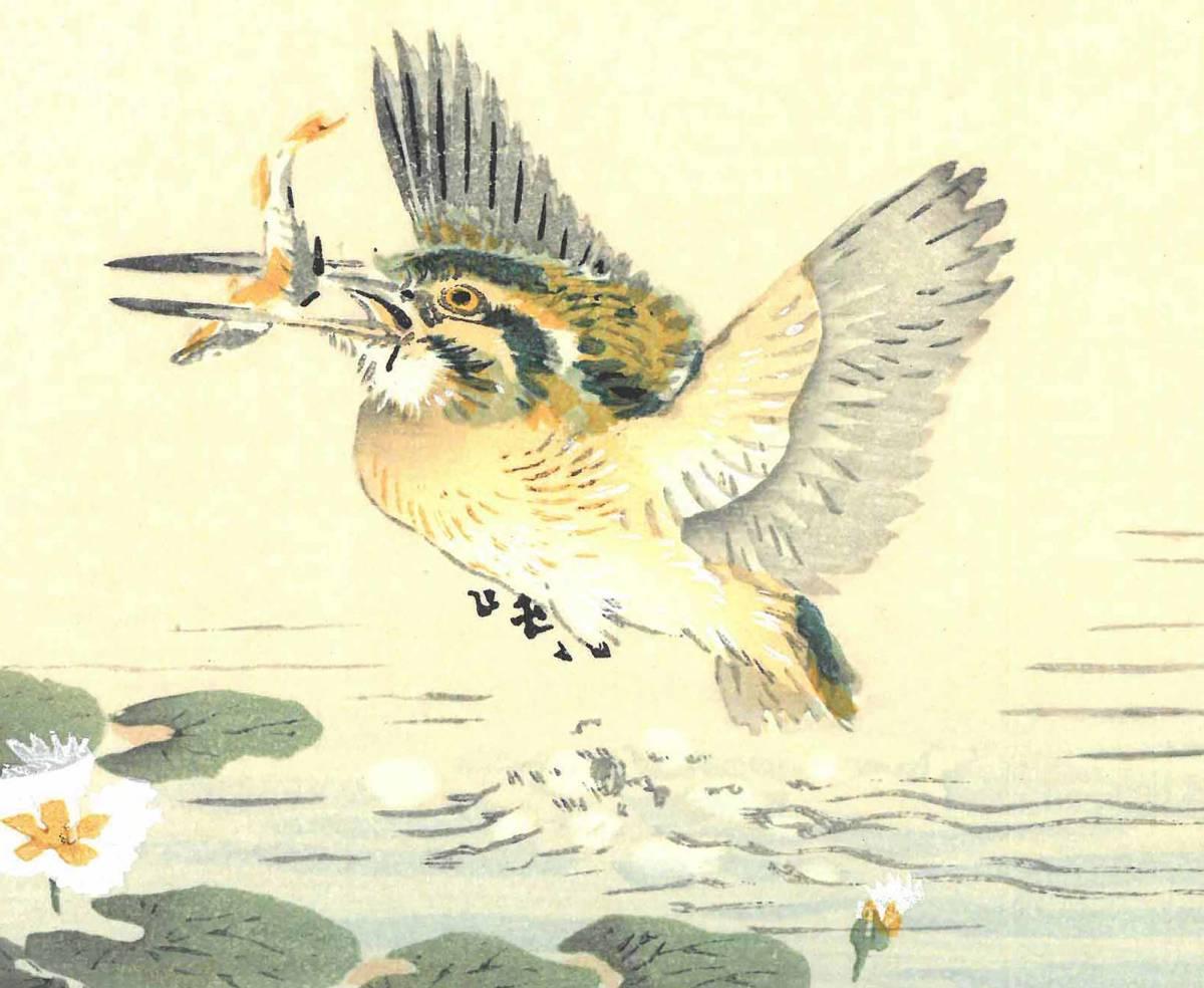 幸野楳嶺 (Kono Bairei) (1844~1895) 木版画 かわせみ 初版明治期~ 版元蔵出し作品! 京都の一流の摺師の技をご堪能下さい。_画像9