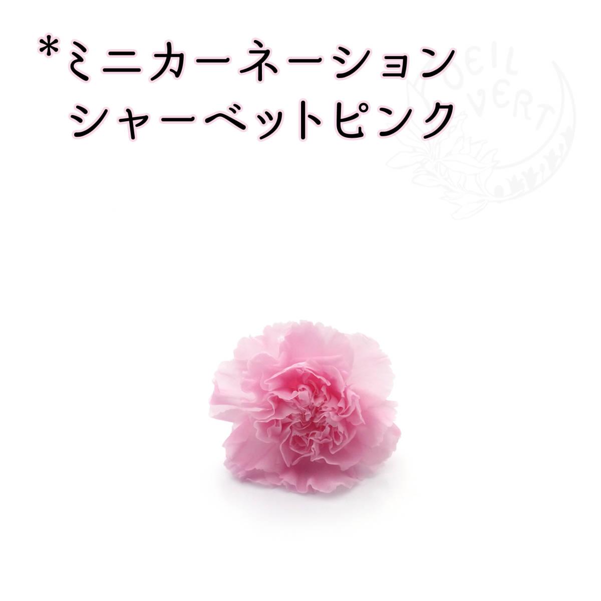 ミニカーネーション シャーベットピンク 1輪_画像1