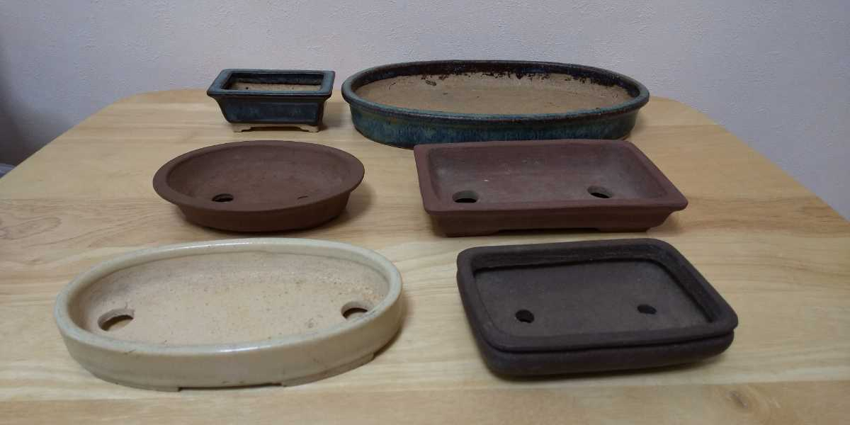 盆栽鉢 植木鉢 /検 ミニ 水盤 海鼠釉 白釉 朱泥紫峰 中国