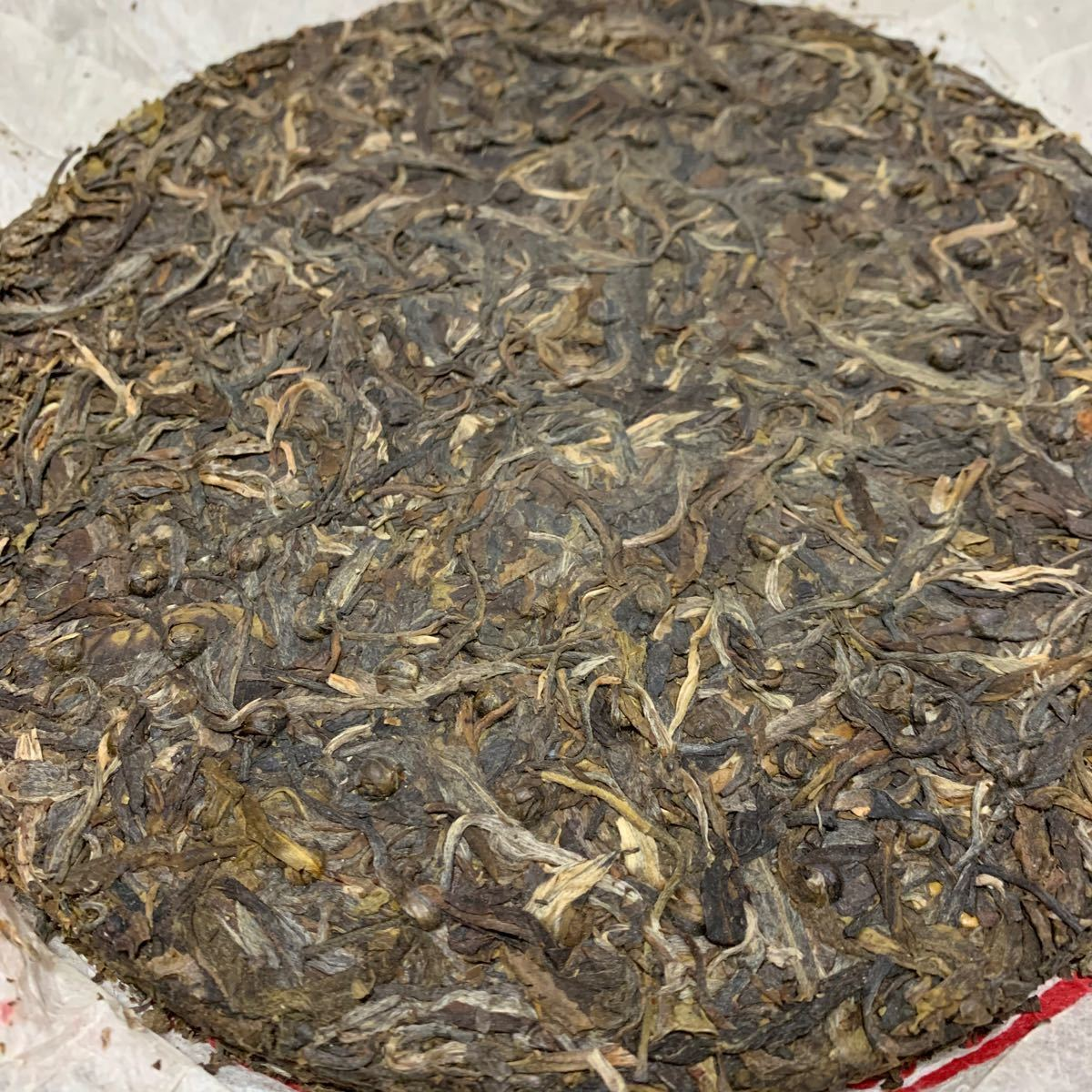 プーアル茶 生茶 2009 特級
