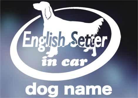 イングリッシュセッター in car ステッカー。犬ステッカー_画像1
