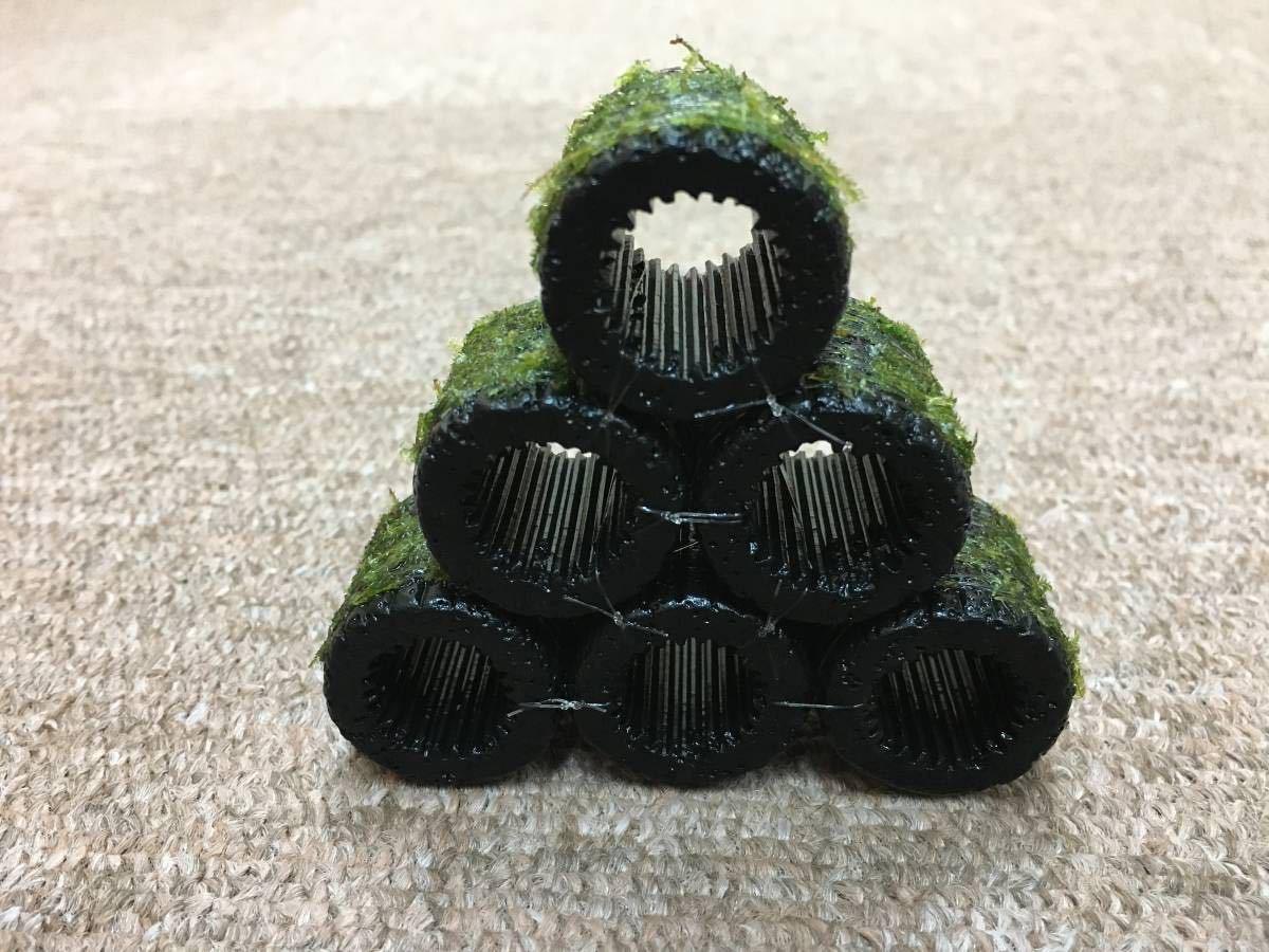 ●送料無料 黒BIGろ材6個ジャイアント南米ウィローモス付○●_綺麗な緑色のモスを巻きつけます。