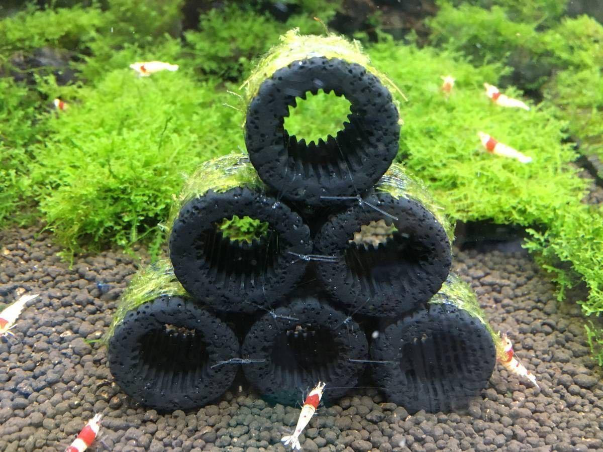 ●送料無料 黒BIGろ材6個ジャイアント南米ウィローモス付○●_エビの隠れ家に最適です。