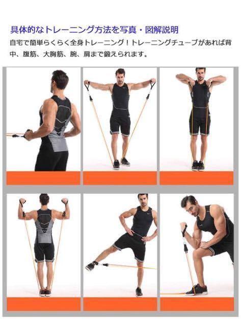 トレーニングチューブ フィットネス チューブ 5本 筋トレ 高強度 ハード ゴム ループバンド トレーニング 強度別セット