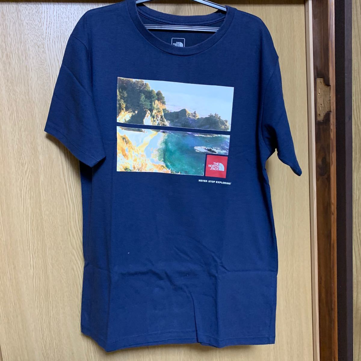 THE NORTH FACE 半袖Tシャツ Tee