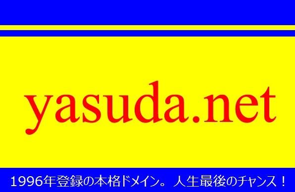 本格ドメイン名【yasuda.net】格安で手に入れる人生最後のチャンス!_画像1