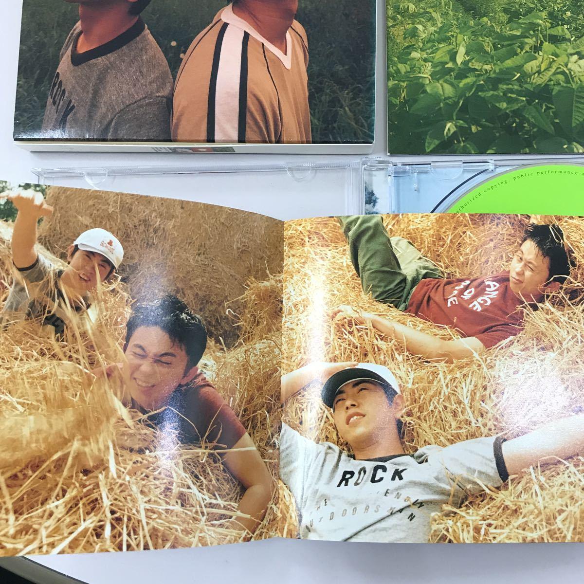CD 中古☆【邦楽】猿岩石 まぐれ