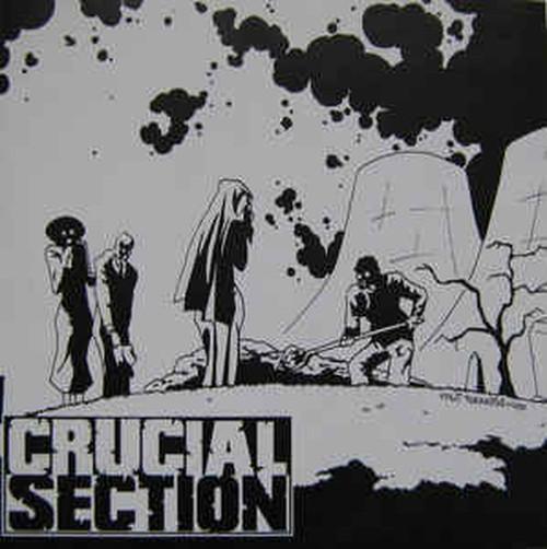 ※中古EP CRUCIAL SECTION:FACE UP TO IT!/split ep 2002年作品 日本/フランス・ハードコアパンク GAUZE VIVISICK NK6 ハンマー_画像1