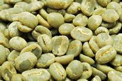 【10㎏】コーヒー生豆 グァテマラ アンティグア レタナ農園 生豆 プレミアムコーヒー 自家焙煎 こだわりコーヒーカフェ 送料無料_画像1