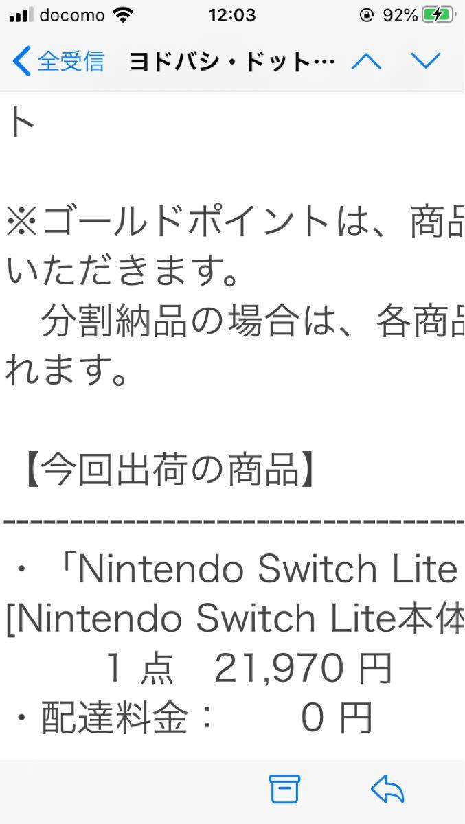 Nintendo switch lite 本体 ターコイズ