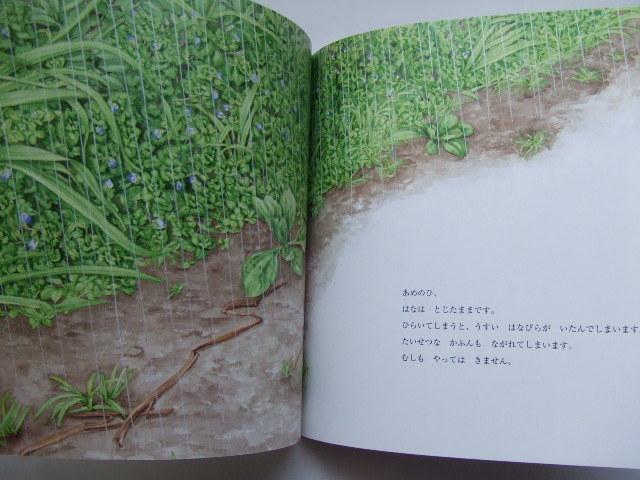 多田多恵子 2冊セット かがくのとも「おおいぬのふぐり」矢間芳子/ちいさなかがくのとも「おはな こちょこちょ」平野恵理子 福音館書店