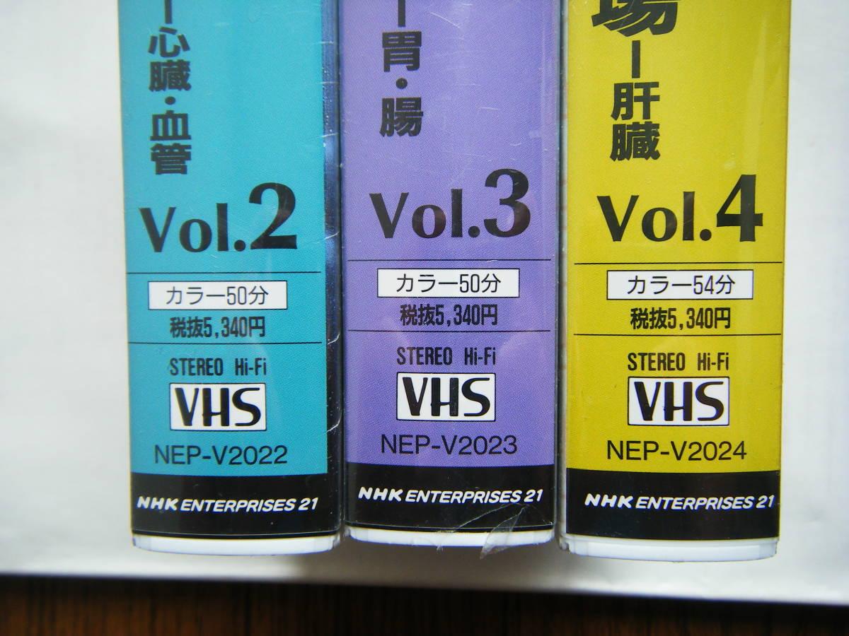 即決未開封?VHSビデオ3本 NHKスペシャル 驚異の小宇宙・人体「Vol.2 しなやかなポンプ」「Vol.3 消化吸収の妙」「Vol.4 壮大な化学工場」_画像4