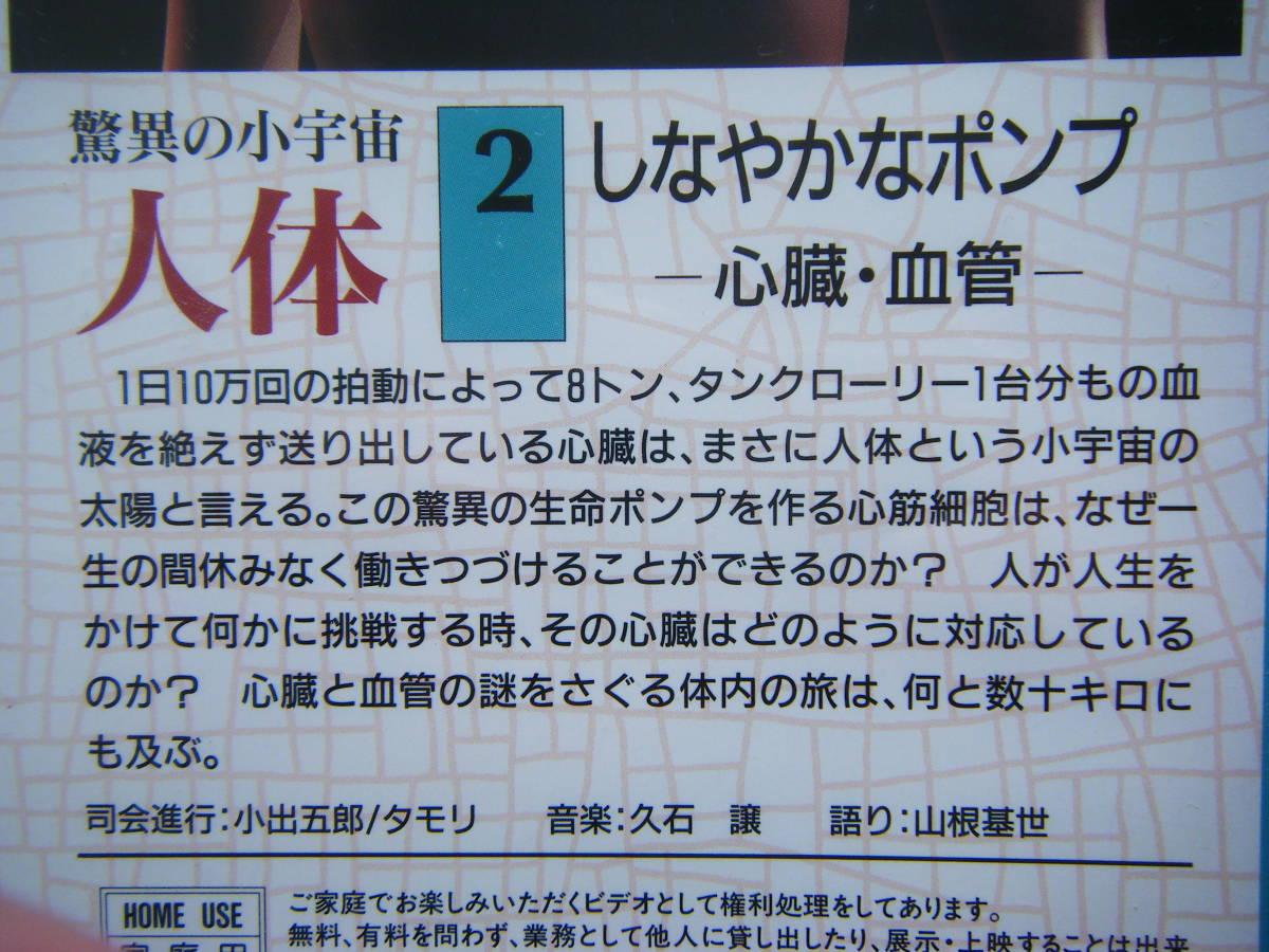 即決未開封?VHSビデオ3本 NHKスペシャル 驚異の小宇宙・人体「Vol.2 しなやかなポンプ」「Vol.3 消化吸収の妙」「Vol.4 壮大な化学工場」_画像5