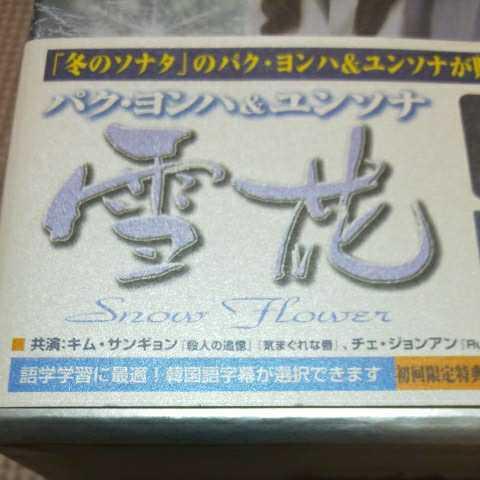 全4巻セット DVD 雪花 snow flower パク・ヨンハ ユンソナ キム・サンギョン 韓流ドラマ 韓国 DVD-BOX _画像2