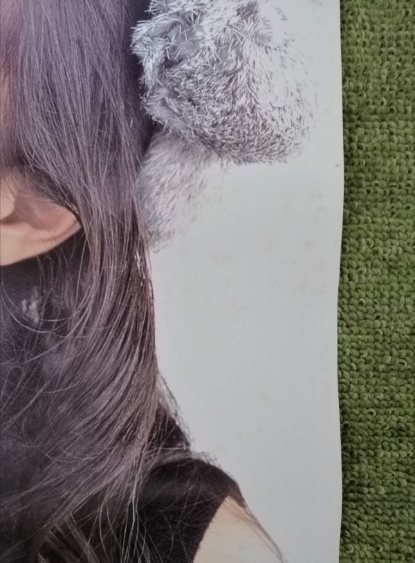 【非売品】★送料無料★ポスター 堀江由衣 hm3 SPECIAL VOL.16 2001年1月号 声優 ①