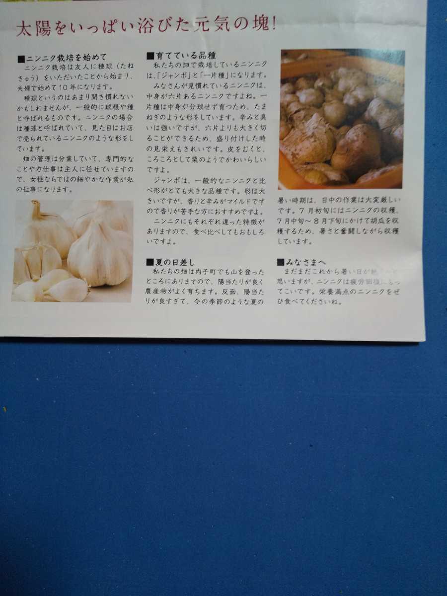 即購入可能 送料込 令和元年産 愛媛県産乾燥にんにく にんにくチップ 50g_画像4