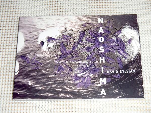 廃盤 David Sylvian デヴィッド シルヴィアン When Loud Weather Buffeted Naoshima /Akira Rabelais Arve Henriksen Christian Fennesz 等
