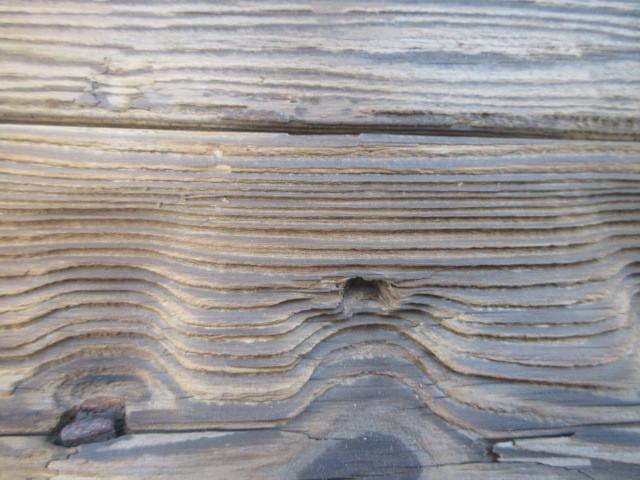 【湖華】古材/検)舟板茶道具煎茶結界盆栽看板建材店舗古民家カフェ20323F15_画像7