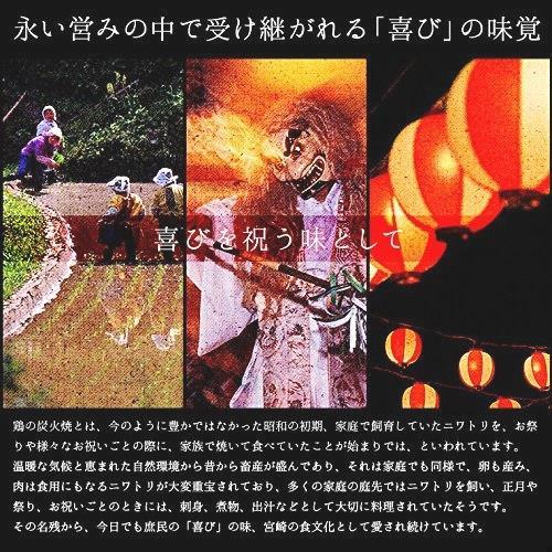 宮崎名物 焼き鳥 鶏の炭火焼 100g×10パック 鳥の炭火焼 コン おつまみ お取り寄せ_画像4