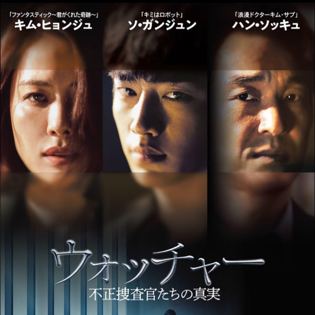 韓国ドラマ 「ウォッチャー 不正捜査官たちの真実」
