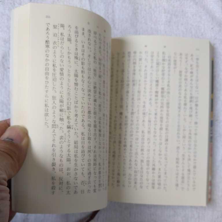 檸檬 (新潮文庫) 梶井 基次郎 訳あり 9784101096018_画像10