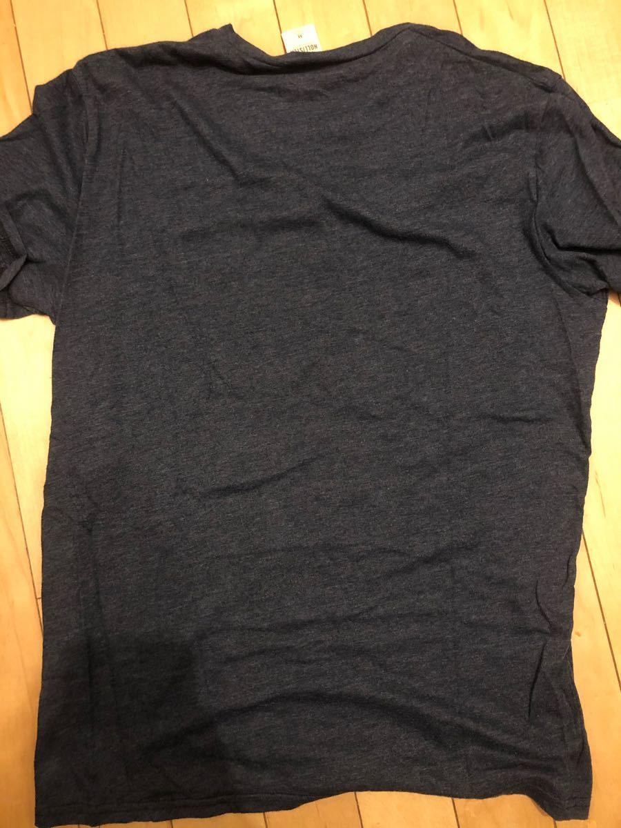 HOLLISTER ホリスターTシャツ