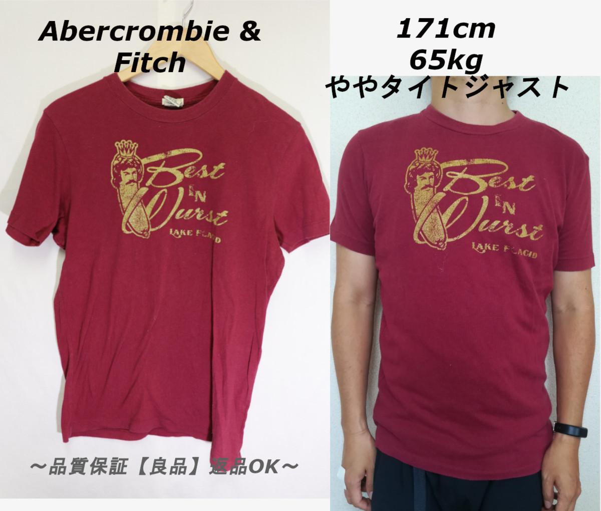 【メンズ】アバクロンビー&フィッチBEST Tシャツ/USAブランドアメカジ老舗カッコいいゴールド!!S_画像1