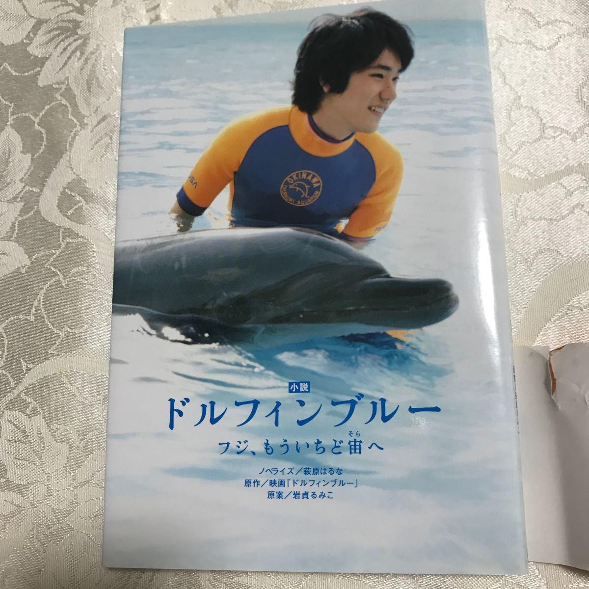 小説ドルフィンブルー/岩貞るみこ