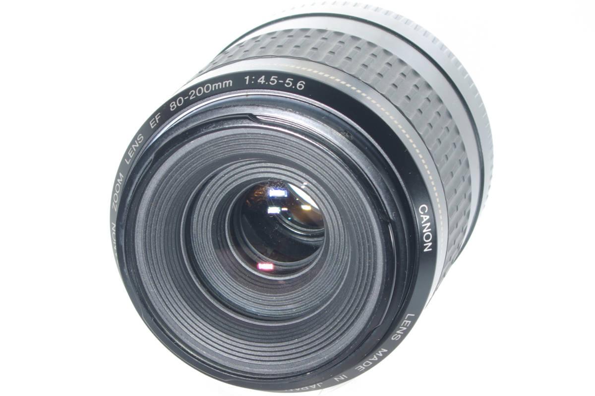 USM 望遠ズーム CANON EF 80-200mm F4.5-5.6 超音波モーター フルサイズ対応 純正レンズキャップ(前後) 実写確認済h_画像8