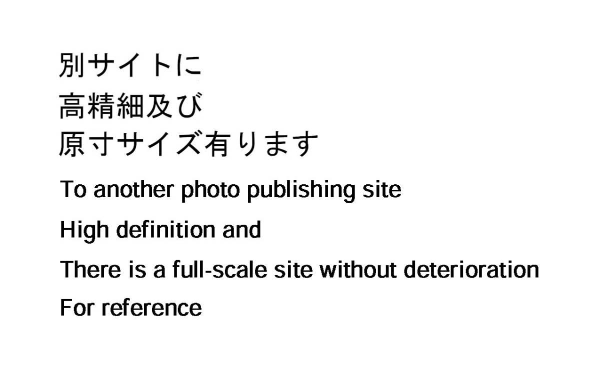 [Vintage] [New Item] [Delivery Free]1990s ARMED DRAGON FANTASY VILLGUST Michitaka Kikuchi? Poster甲竜伝説ヴィルガスト[tag2222]_画像9