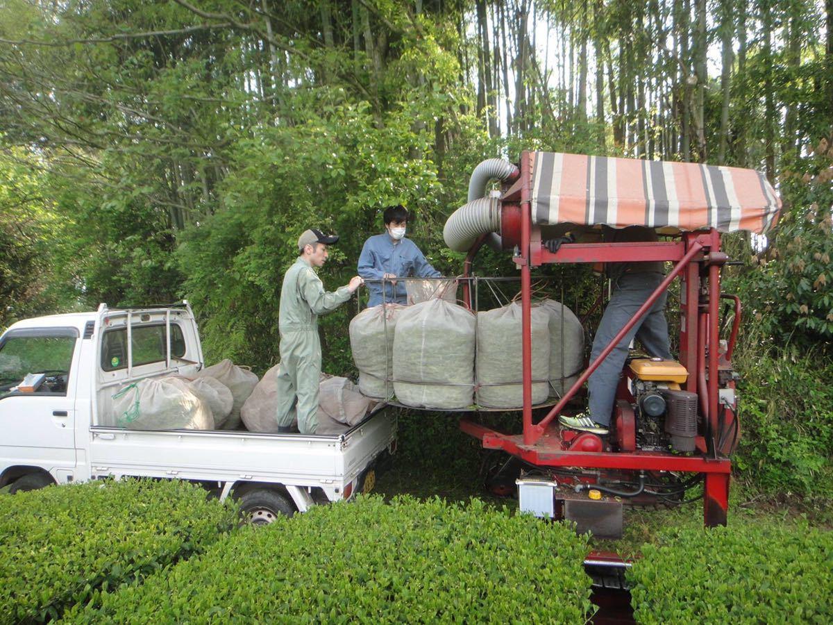 あさぎり誉100g1袋あさぎりほうじ茶90g1袋 新茶 生産者直売 無農薬無化学肥料栽培 カテキンパワー 免疫力アップ シングルオリジン_画像6