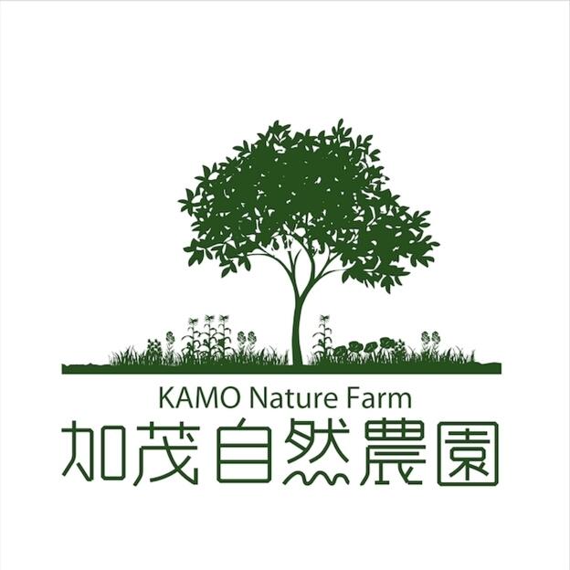 ほうじ茶(30g)農薬・肥料不使用 加茂自然農園のお茶 送料120円_画像4