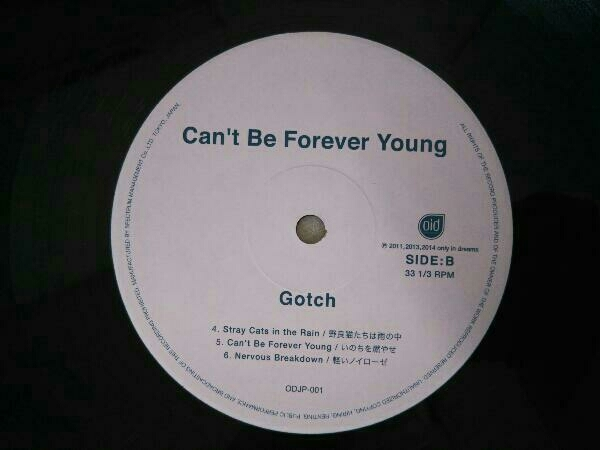 【LP】ゴッチ Gotch/Can't Be Forever Young 後藤正文_画像3