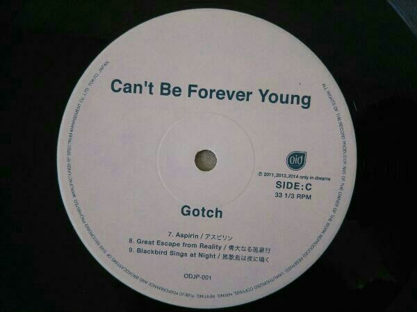 【LP】ゴッチ Gotch/Can't Be Forever Young 後藤正文_画像4